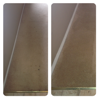 carpet-cleaning-bloomfield-before-after-6